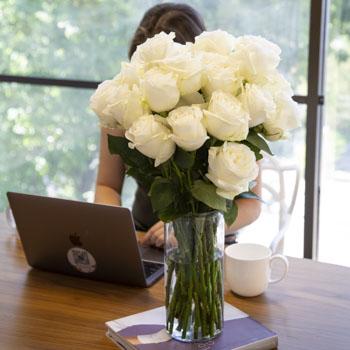 Fresh European Cut White Roses For Your House