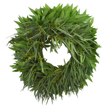 Bay Leaf and Willow Seeded Eucalyptus Wreaths