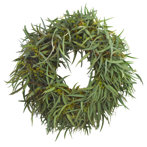 Fresh Willow Seeded Eucalyptus Wreaths
