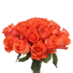 Bulk Rose Dark Orange Wow