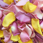 Pastel Mix Freeze Dried Rose Petals