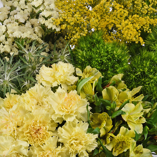 Yellow Textured Filler Flower Pack