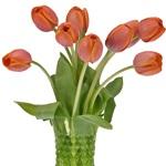 Ad Rem Orange Tulip Wholesale Flower In a vase
