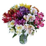 Farm Mix alstroemeria Wholesale Flower In a vase