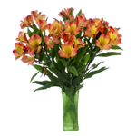 Orange Yellow alstroemeria Wholesale Flower In a vase