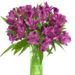 Purple alstroemeria Wholesale Flower In a vase