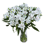White Fresh alstroemeria Wholesale Flower In a vase