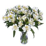 Yellow Sunbath alstroemeria Wholesale Flower In a vase