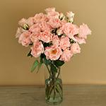 Anastasia Pink Spray Wholesale Roses In a vase