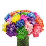 Assorted Dyed Farm Mix Carnation Flowers In a vase