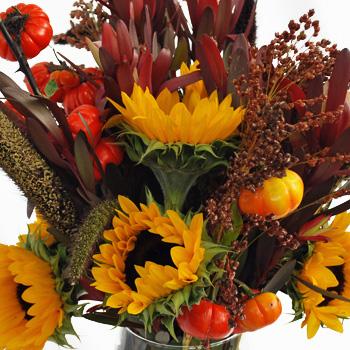 Autumn Sunflower Fall Wholesale Flowers