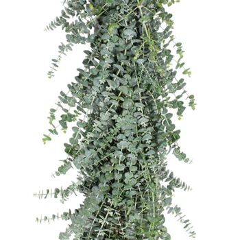 Baby Eucalyptus Garland Wholesale