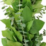 Baby Eucalyptus and Salal Greens Garland Wholesale Up Close