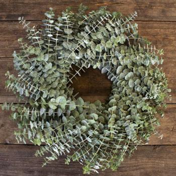Baby Eucalyptus Fresh Wreaths