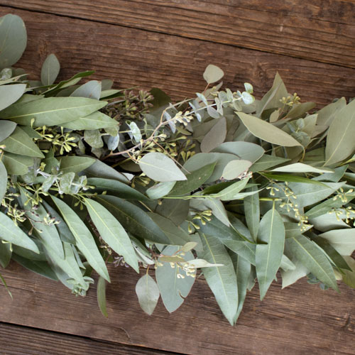 Mixed Eucalyptus and Bay Leaf Garland