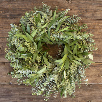 Mixed Eucalyptus and Bay Leaf Wreath