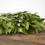 Bulk Wreath Packages Bayleaf