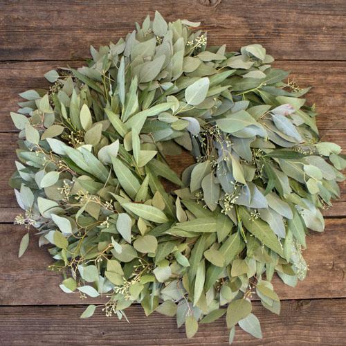 Bay Leaf and Seeded Eucalyptus Wholesale Greenery FlatLay