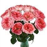 Bleeding Heart Garden Wholesale Roses In a vase