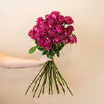Blueberry Fresh cut Wholesale Rose Bunch in a hand