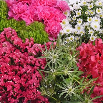 Bright Pink Textured Filler DIY Flower Kit Up Close