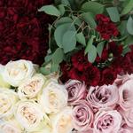 Burgundy Blush DIY Flower Kit Up Close