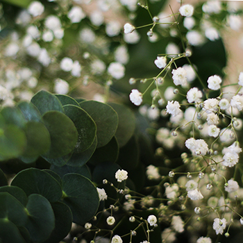 Classic Wedding Greenery DIY Flower Kit Up Close