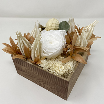 Simple Sensibility White Dried Flower Arrangement