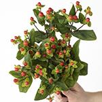 Cream and red hypericum berry wholesale wedding flowers