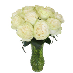 Creamy Ivory Garden Wholesale Roses In a vase