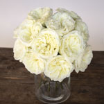 Creamy Ivory Peony Wholesale Roses In a vase