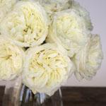 Creamy Ivory Peony Rose Bunch