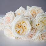 Creamy White Garden Rose Bunch