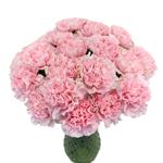 Damina Light Pink Carnation Flowers In a vase