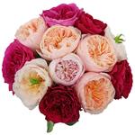 David Austin Assorted Garden Wholesale Roses In a vase