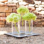 Lime Hydrangea Wholesale Flower Bunch Centerpieces