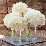 Simply Lush White Hydrangea Wholesale Flower In a vases