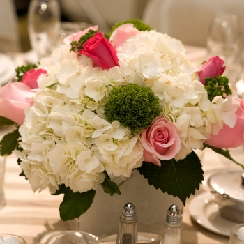 DIY Wedding Flower 200 Roses and 15 to 20 Hydrangeas  Up Close