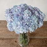 Dusty Blue Carnation Wedding Flowers in a Vase