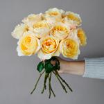 Effie Ausgrey Light Orange Garden Wholesale Rose Bunch in a hand