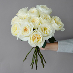 Ella Auswagsy White Garden Wholesale Rose Bunch in a hand