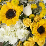 Yellow flower kit DIY wedding flowers