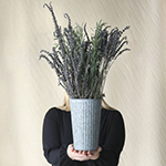 Fresh Lavender and lavender greenery sold at fiftyflowers