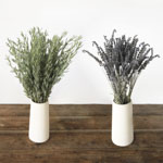 Fresh lavender flowers and lavender greenery