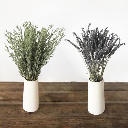 Fresh lavender flowers and lavender greenery