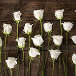 White rose bulk wedding flowers