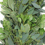 Seeded Eucalyptus and Variegated Pittosporum Garland Up Close