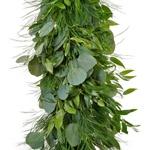 Silver Eucalyptus, Italian Ruscus, and Tree Fern Wholesale Greenery Up Close