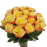 Florida Strawberry Kiss Yellow Wholesale Roses In a vase