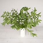 Bulk greenery fresh fall bay leaf filler flowers designed